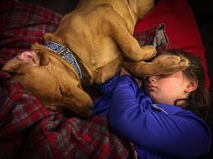 kid dog sleeping