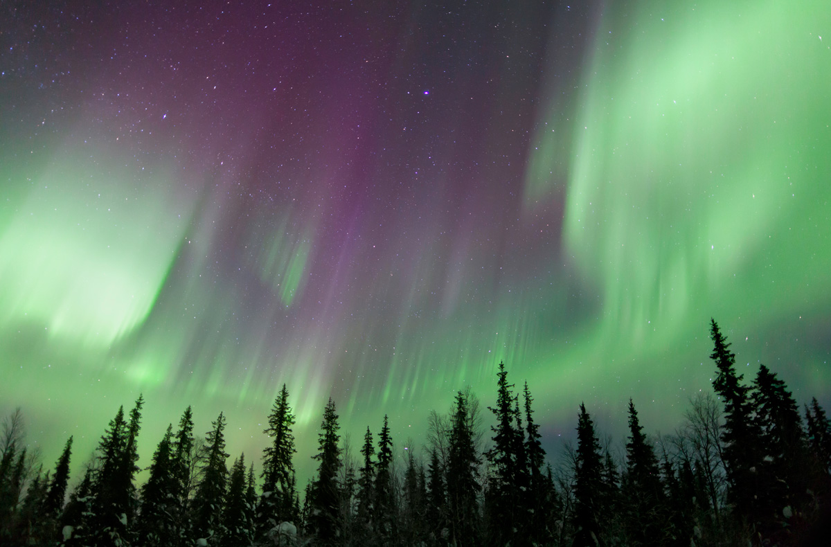Forecast Northern Lights