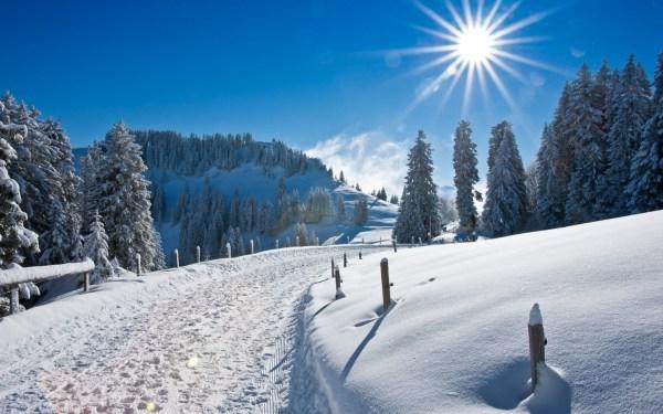 Free Winter Wonderland Desktop Wallpaper