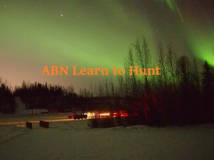 ABN Learn to Hunt