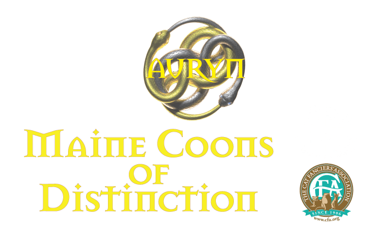 Maine Coons of Distinction Logo