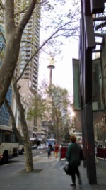 Auto Mode did have issues picking up Sydney Tower Eye