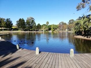 Nurragingy Reserve pond/lake