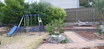 S10e backyard