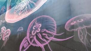 Mi 9t Melbourne Street Art