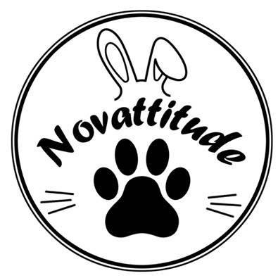 Novattitude