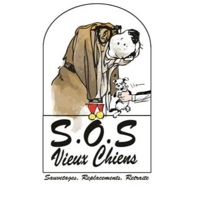 SOS Vieux Chiens