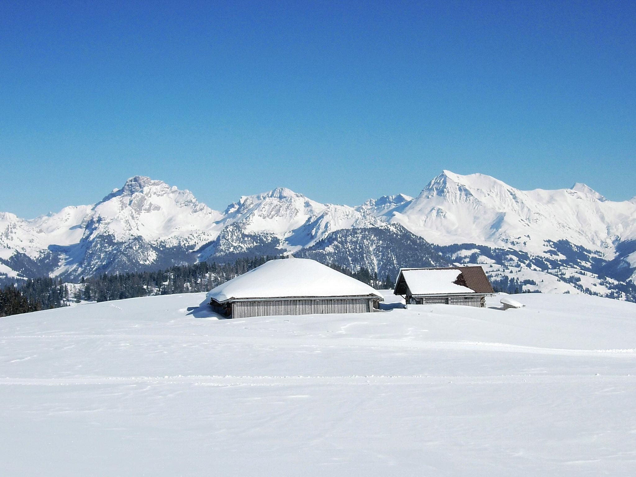 Winterplausch in Zweisimmen - Gstaad Mountain Rides