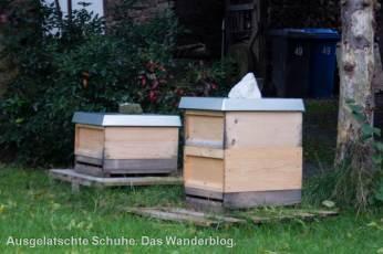 Obstweg Bienenstock