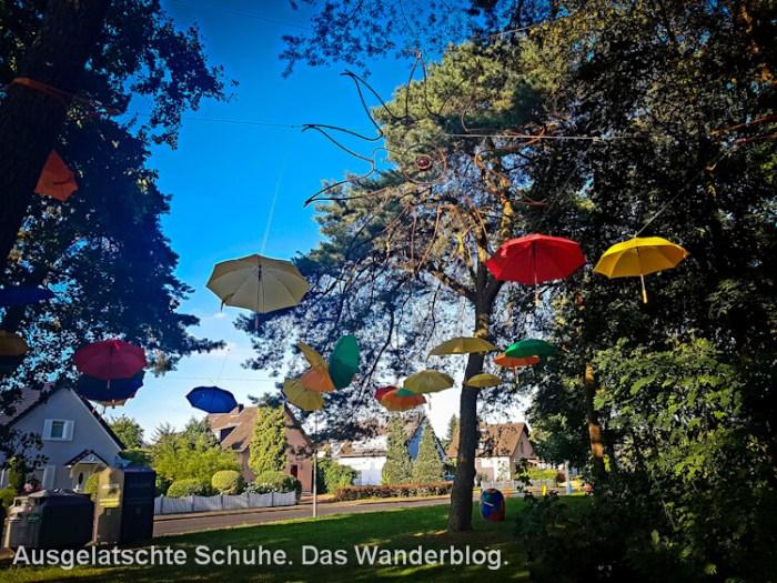 Wandern auf dem Kölnpfad