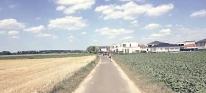 Felder am Weg bei Libur