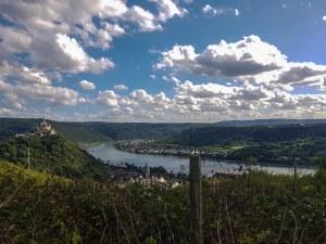 Geführte Wanderungen auf dem RheinBurgenWeg