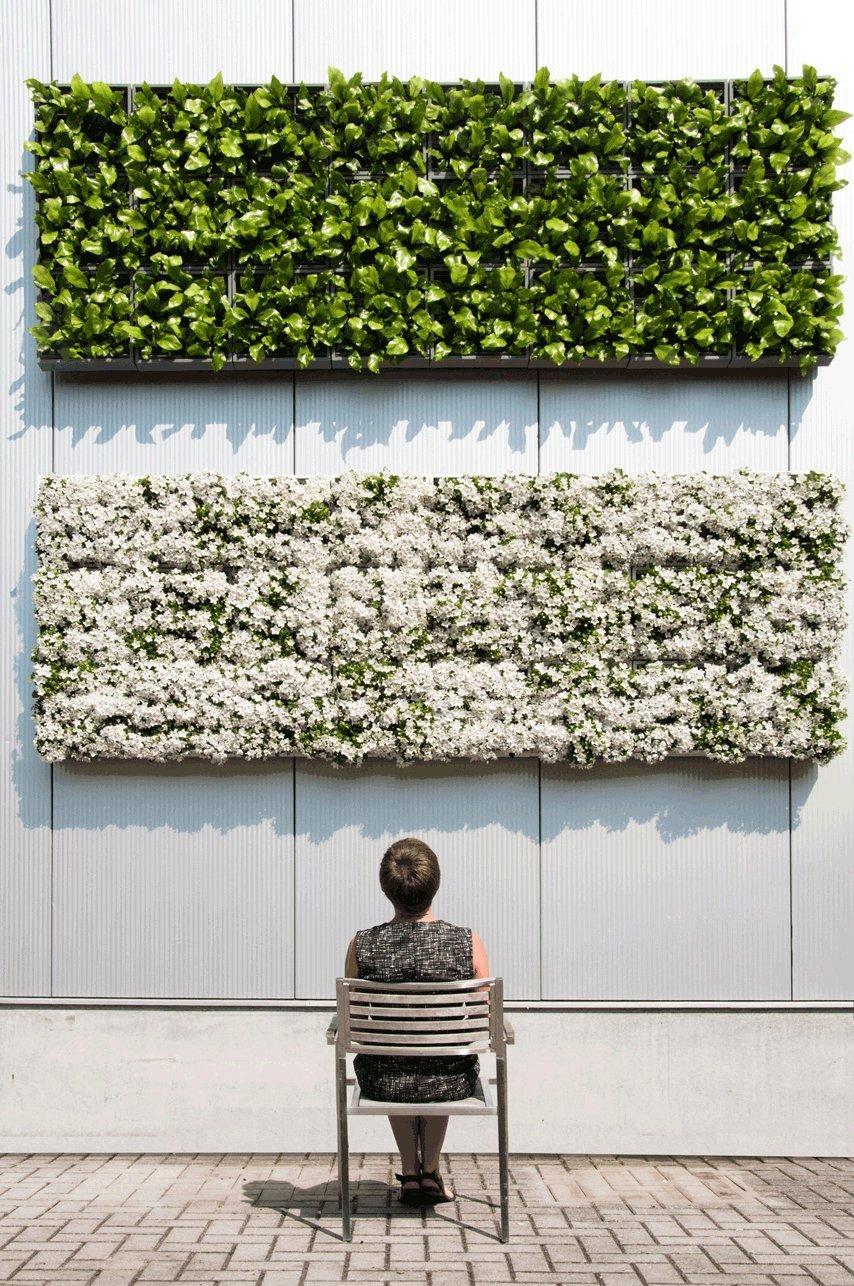 un mur v g tal tendance 2019 d co d 39 int rieur et d 39 ext rieur. Black Bedroom Furniture Sets. Home Design Ideas