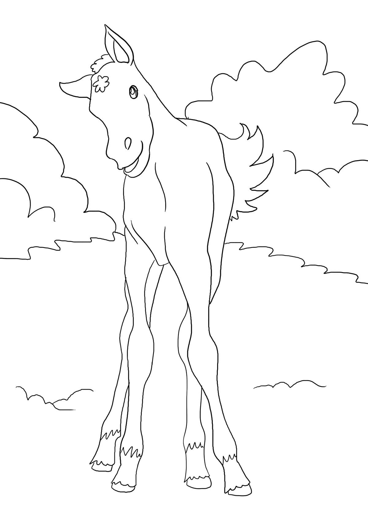 Fohlen Ausmalbilder Pferde - viele Malvorlagen mit Pferden