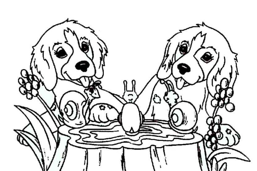 Ausmalbilder Kostenlos Hunde 8 Ausmalbilder Kostenlos