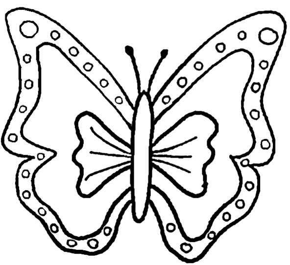 Schmetterling 7 Ausmalbilder Kostenlos
