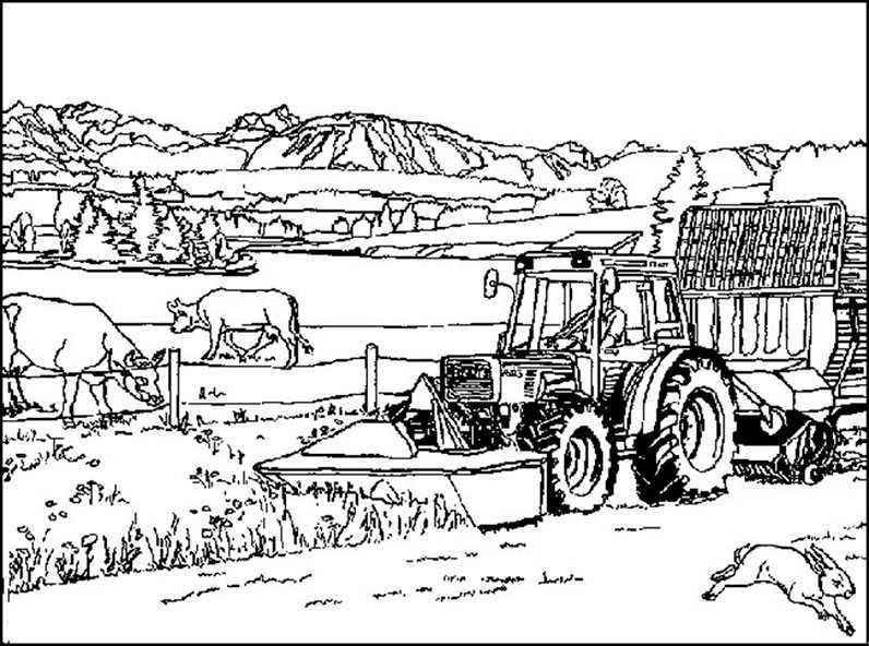 35 Traktoren Zum Ausmalen - Besten Bilder von ausmalbilder