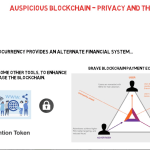 Auspicious Blockchain - Privacy and the Blockchain
