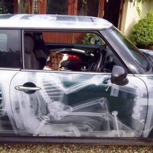 Колата ренген.