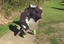 Golfer uses umbrella as a sail for wind-powered golf buggy: video
