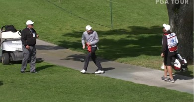 Ball stuck in tree, then unstuck, leads to craziest par you'll see all year