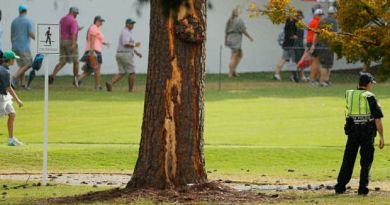 Golf fans injured as lightning hits tree at TOUR Championship