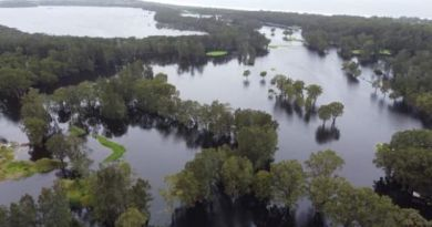 More incredible photos from flooded New South Wales golf courses