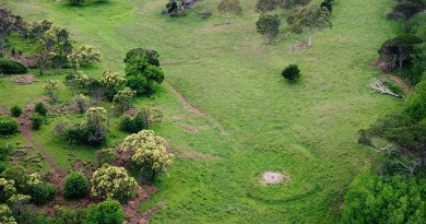 KAMERUKA The search for a lost Australian golf course