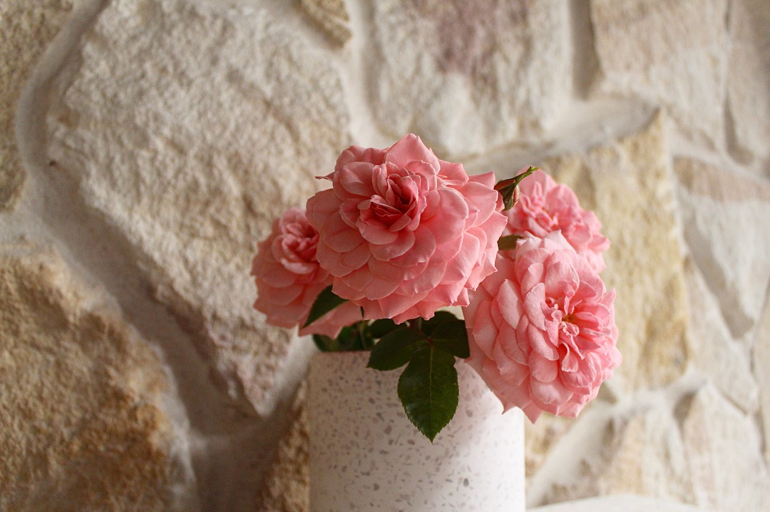 Irregular Ranch Australian stone wall claddings used in a feature wall with some pink flowers