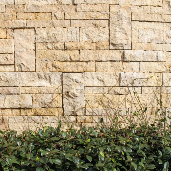 Landscape design of an exterior feature wall using Colonial Simpson limestone wall claddings