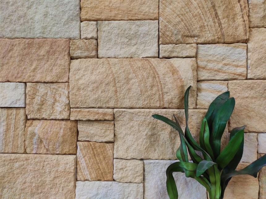 Natural stone wall cladding in a featured wall wth a nice plant decoration