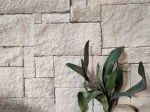 Aussietecture Colonial white walling stone, sandstone, rectangular and square shape