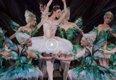 Watch THE SLEEPING BEAUTY by The Australian Ballet now