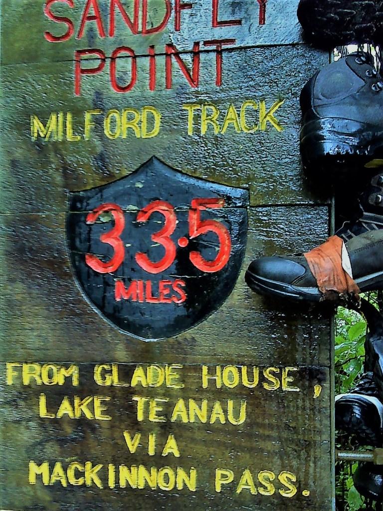milford-track-new-zeeland