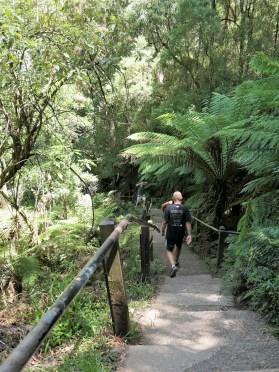 Dandenong Ranges National Park, Kokoda Track Memorial Walk