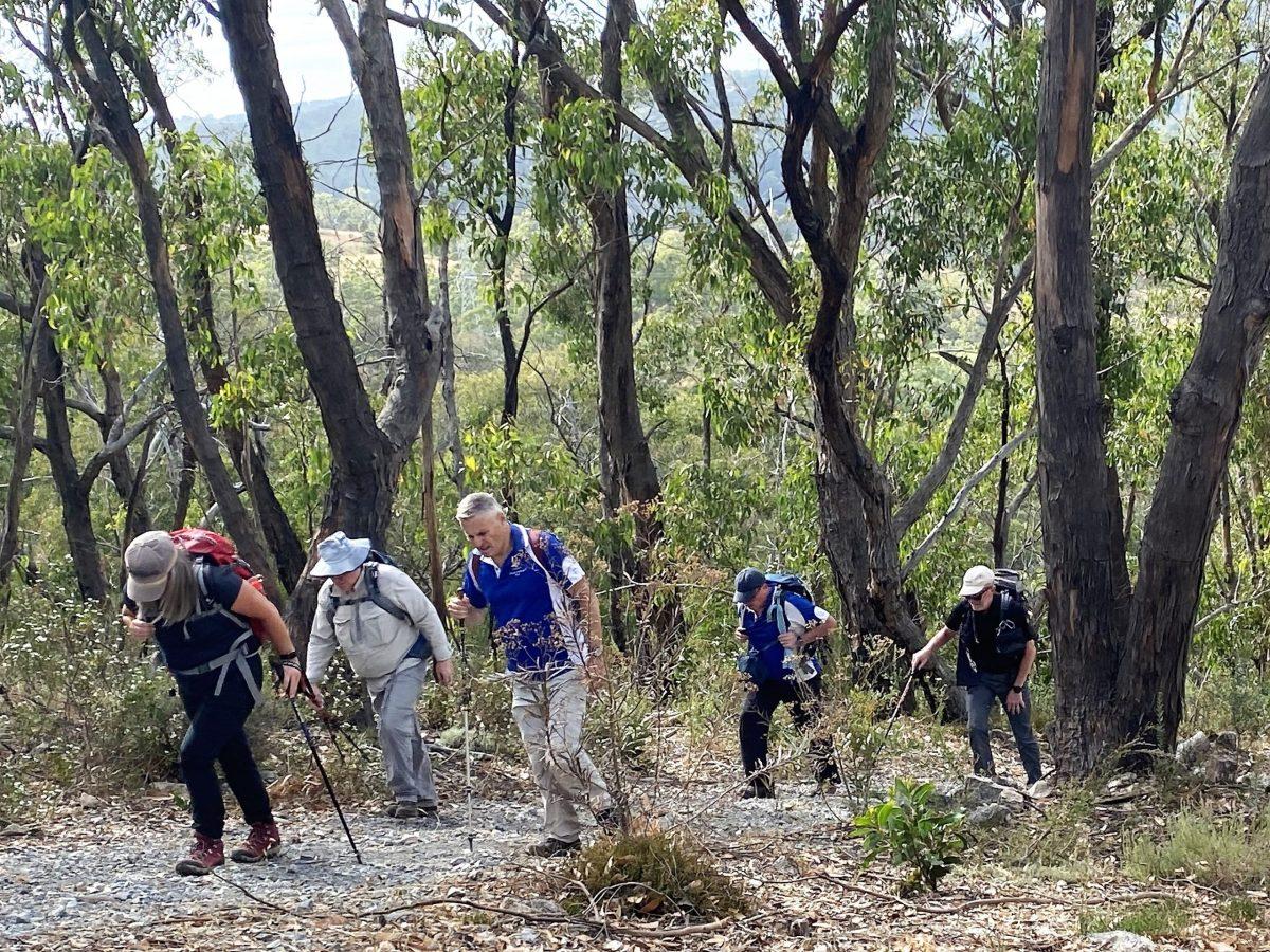 Black Hill Conservation Park Walks