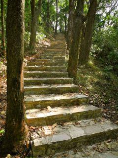 Yuen Tsuen Ancient Trail