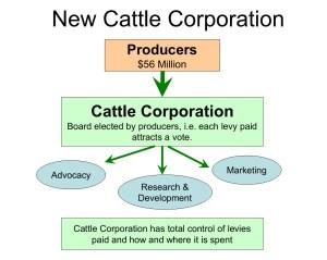 CattleCorpModel