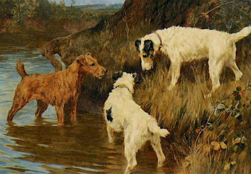 Three Terriers on the Scent -- Arthur Wardle