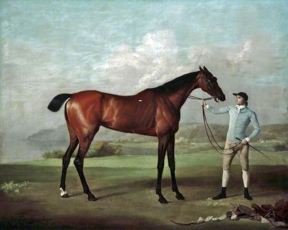 Cold-blood, Hot-blood, Thoroughbred . . . Do you know your Regency horses? A mini-primer by Sharon Lathan