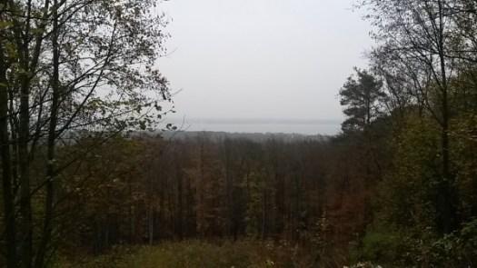 Aussicht Müggelwald
