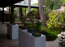 Eingangsbereich zum Teehaus