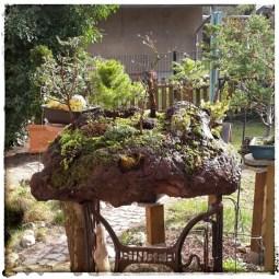 Bonsaigarten auf Lavastein