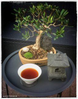 Teepause an Olive