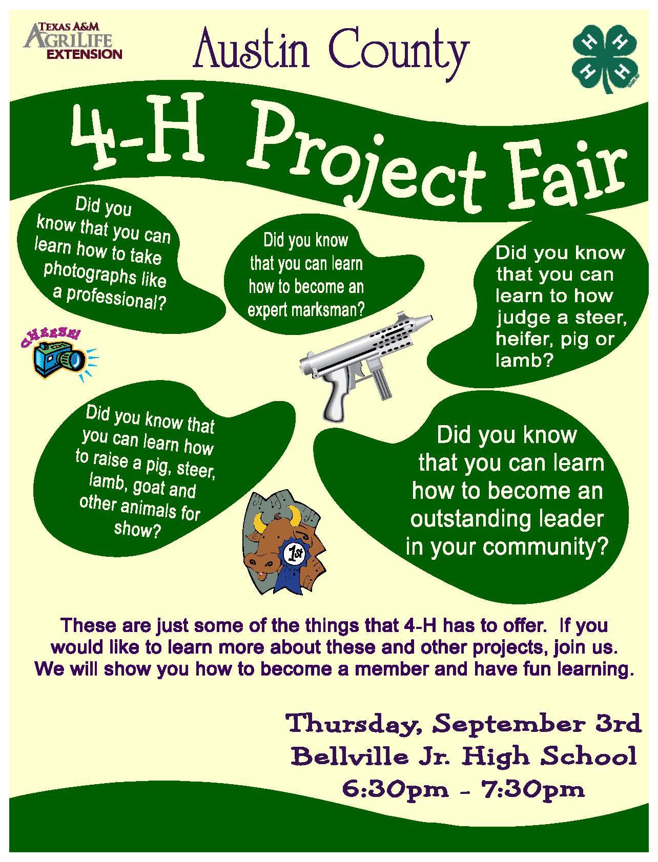 4 H Project Fair