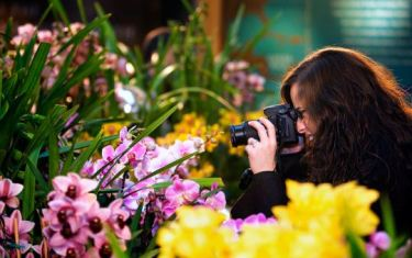 Photography in the Garden
