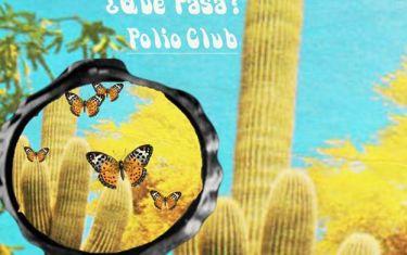 DANIEL FRANCIS DOYLE & THE DREAMS, EGO, QUE PASA?, POLIO CLUB