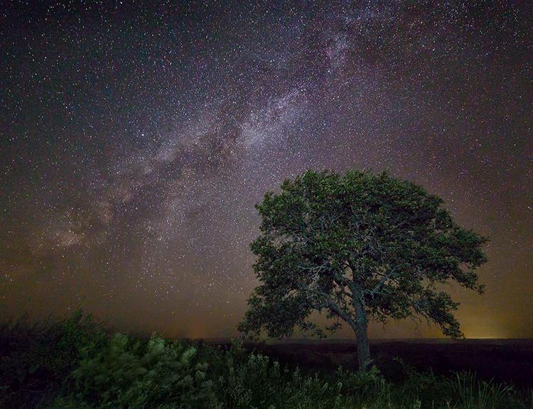 night starry stars astrophotography astronomy stargazing long exposure night photography