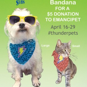 ThunderPets benefiting Emancipet