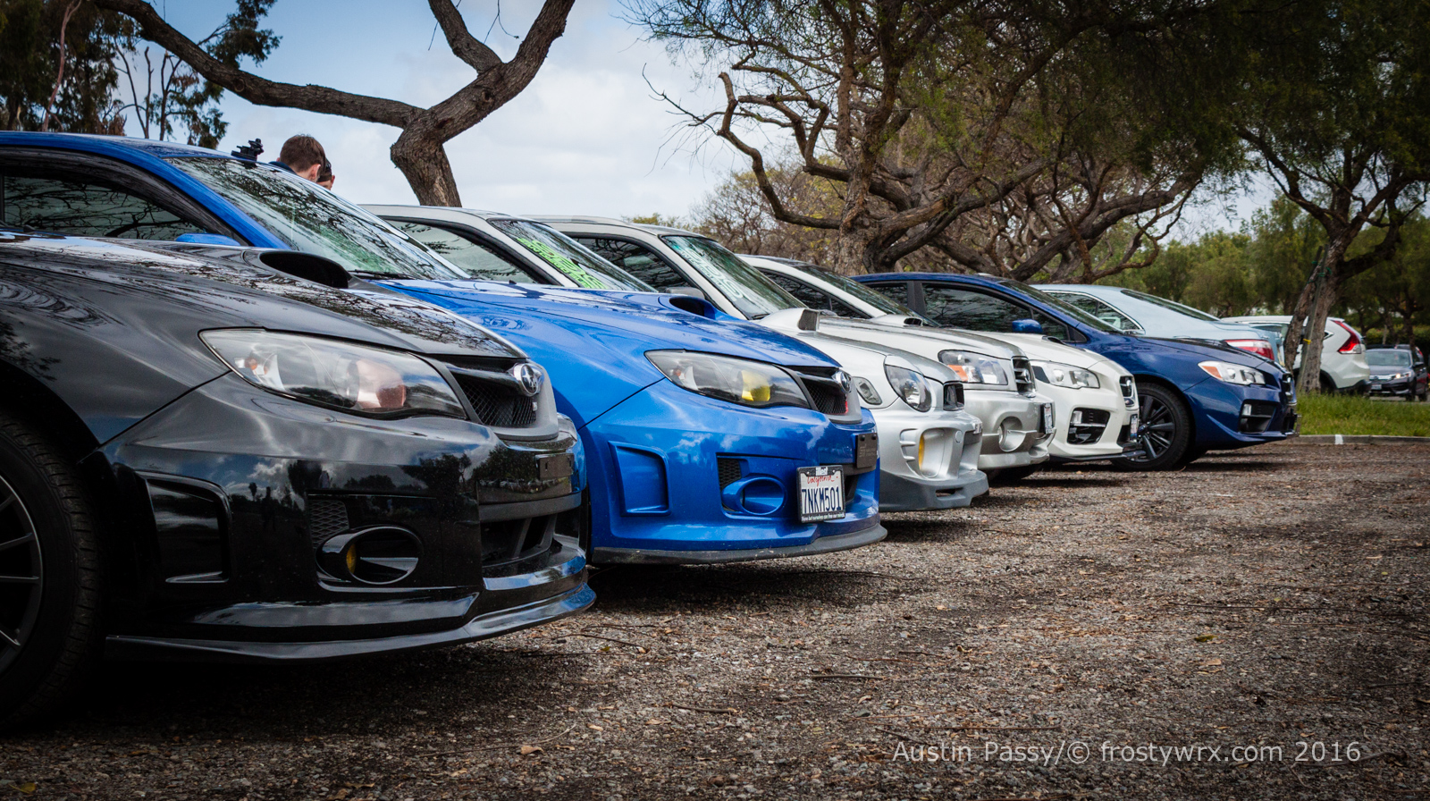 Subarus lined up